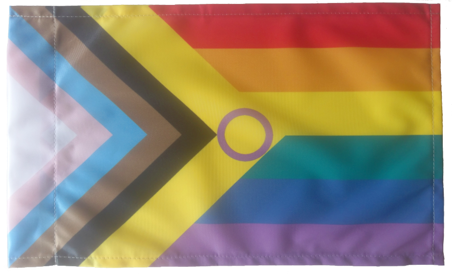 Inter*Progress Regenbogen Flagge 30x50